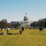 National Mall Lawn