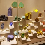 Display at the National Museum of Natural History